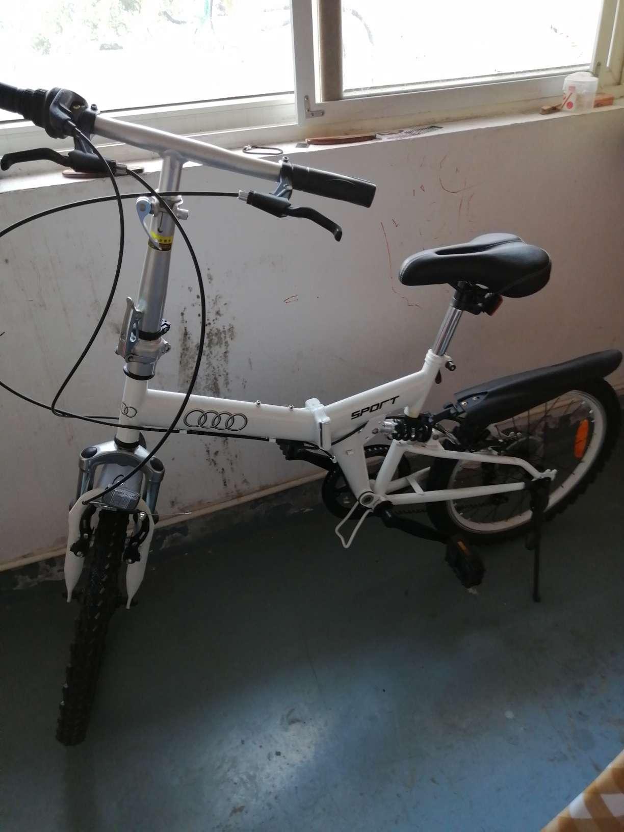 奥迪自行车