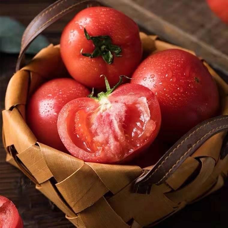 普罗旺斯西红柿