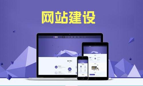 网站开发(扶植版)